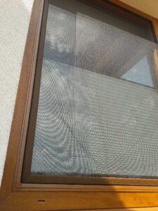 moskitiera okienna tanio